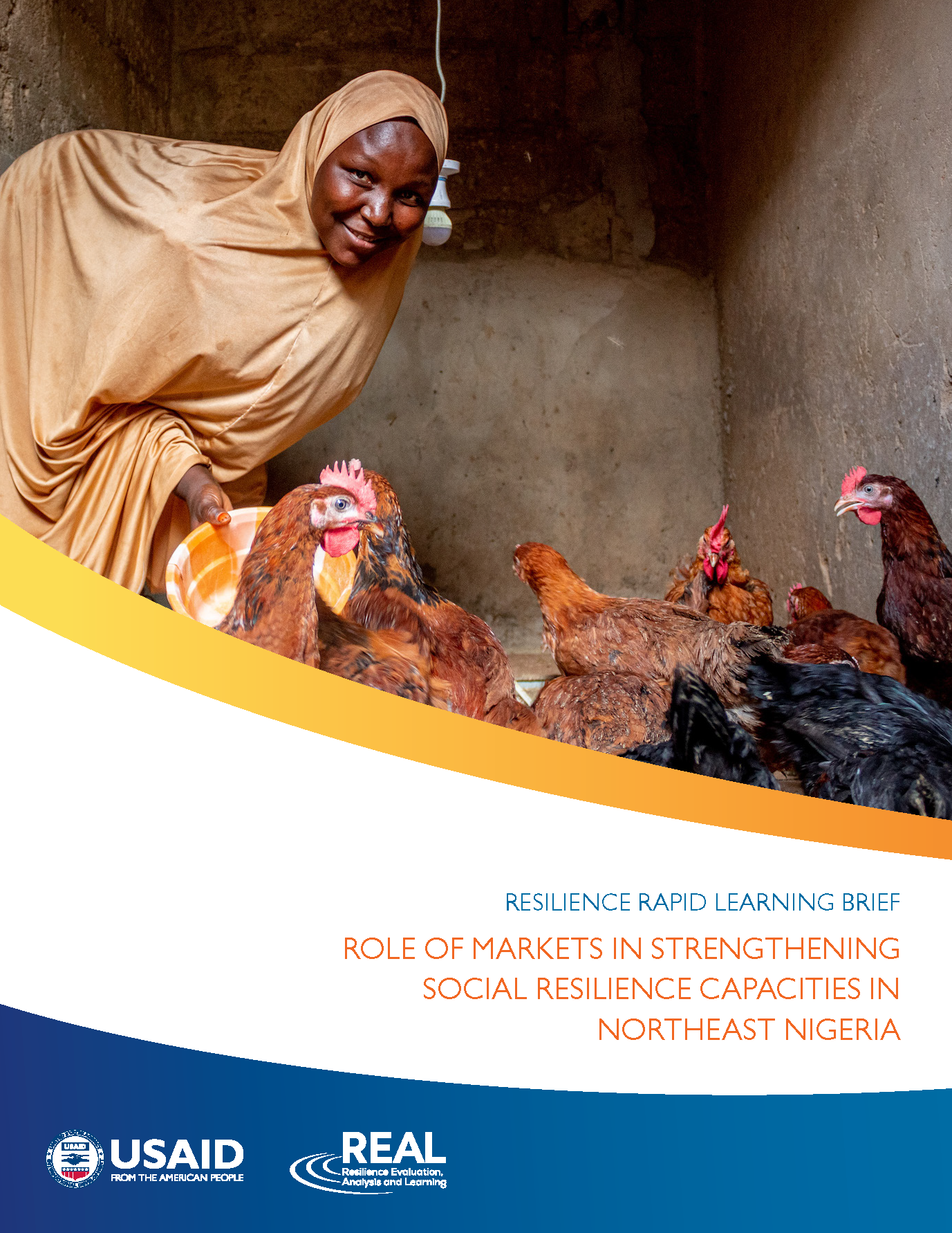 Nigeria Learning Brief Cover