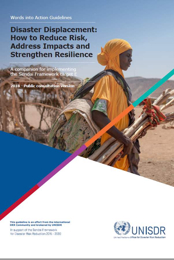 Download Resource: Disaster Displacement: How to Reduce Risk, Address Impacts and Strengthen Resilience