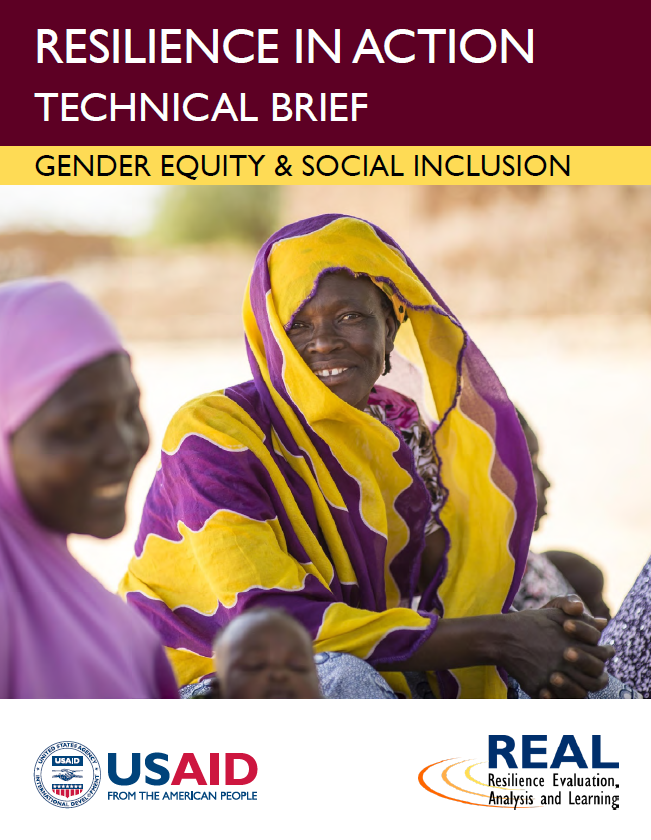 Download Resource: Resilience in Action Series: Gender Equity & Social Inclusion