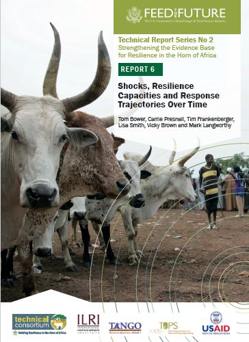 Download Resource: Shocks, Resilience Capacities and Response Trajectories Over Time