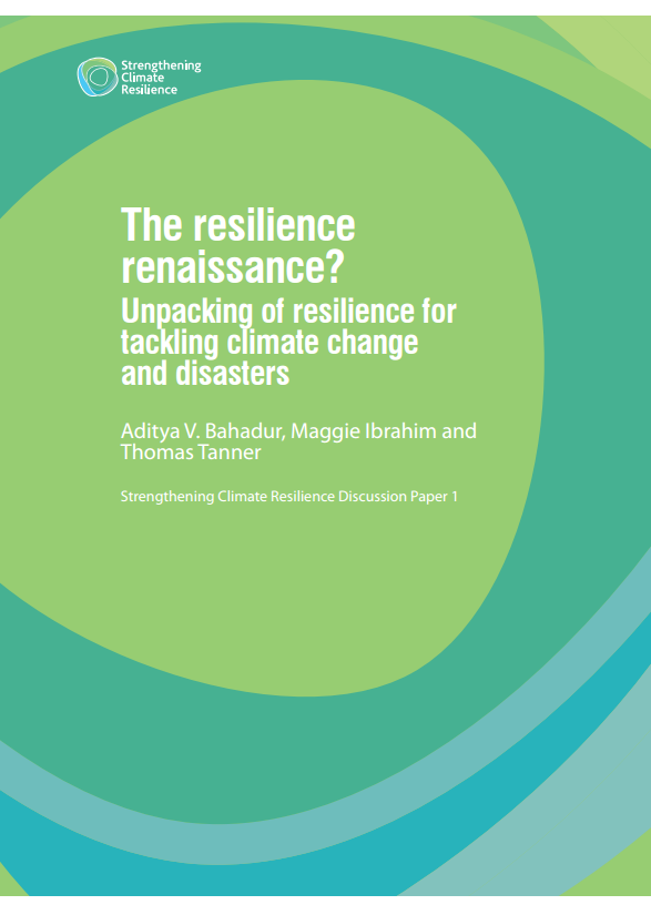 Download Resource: The Resilience Renaissance? Unpacking of Resilience for Tackling Climate Change and Disasters