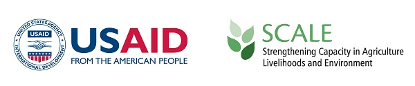 USAID and SCALE logos