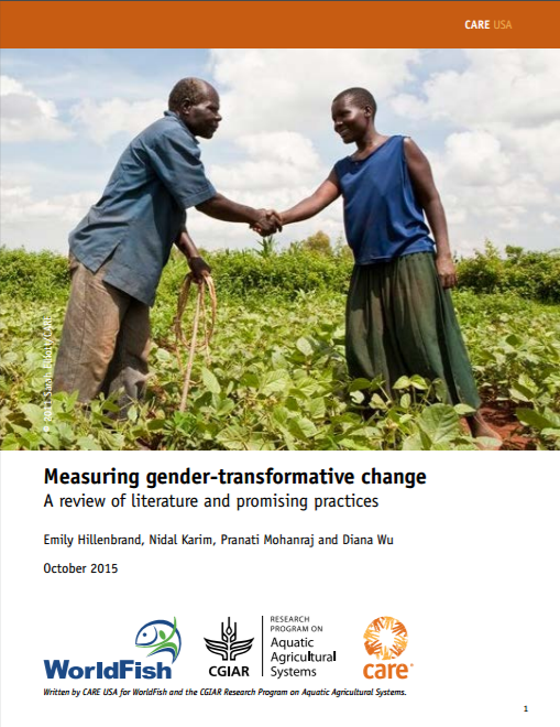 Download Resource: Measuring Gender-Transformative Change: A Review of Literature and Promising Practices