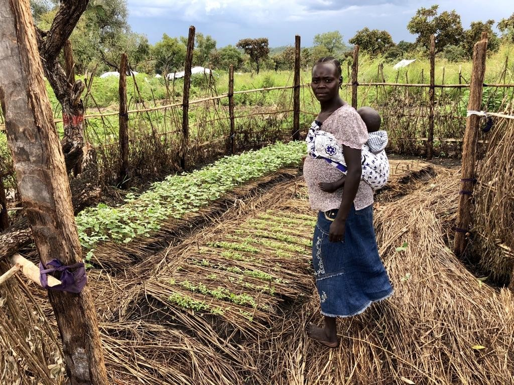 Productive household Permagarden in Palabek Refugee Settlement, Northern Uganda. African Women Rising