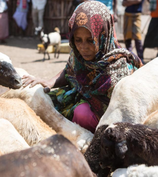 photo of woman with goats