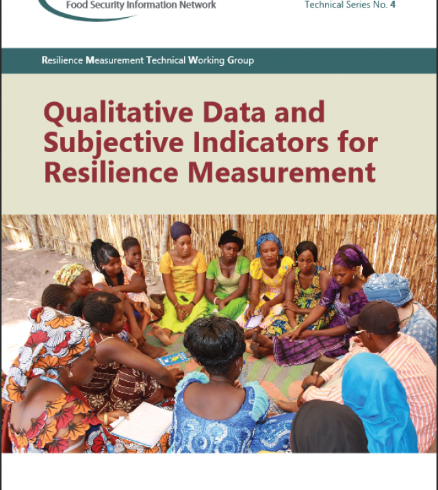 Download Resource: Qualitative Data and Subjective Indicators for Resilience Measurement