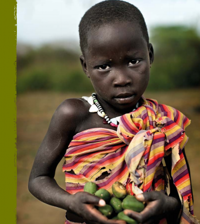 Download Resource: A Life Free from Hunger: Tackling Child Malnutrition