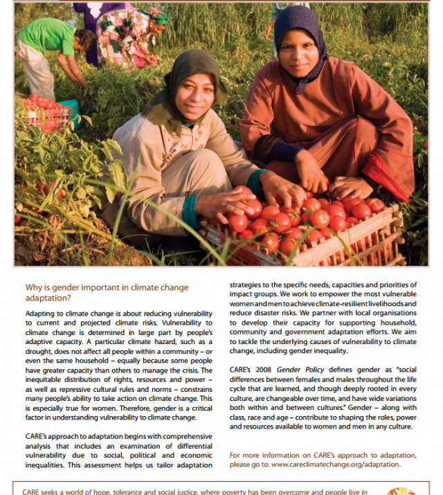 Download Resource: Adaptation, Gender and Women's Empowerment