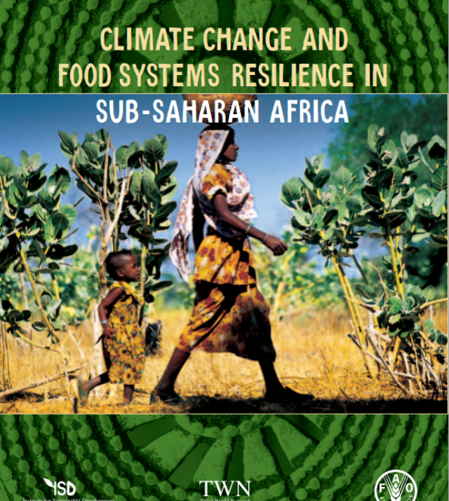Download Resource: Climate Change and Food Systems Resilience in Sub-Saharan Africa