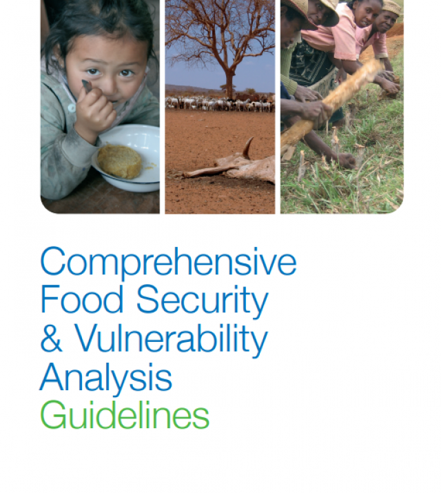 Download Resource: Comprehensive Food Security & Vulnerability Analysis (CFSVA) Guidelines - First Edition, 2009