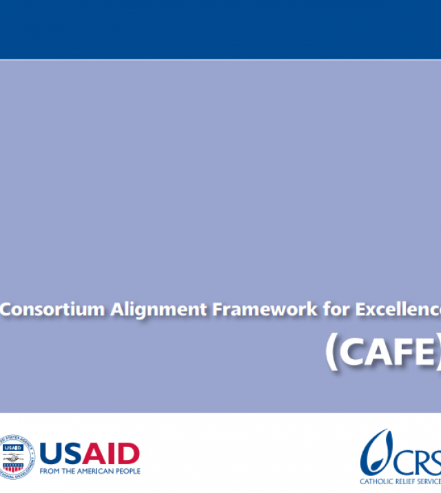 Download Resource: Consortium Alignment Framework for Excellence (CAFE) Manual