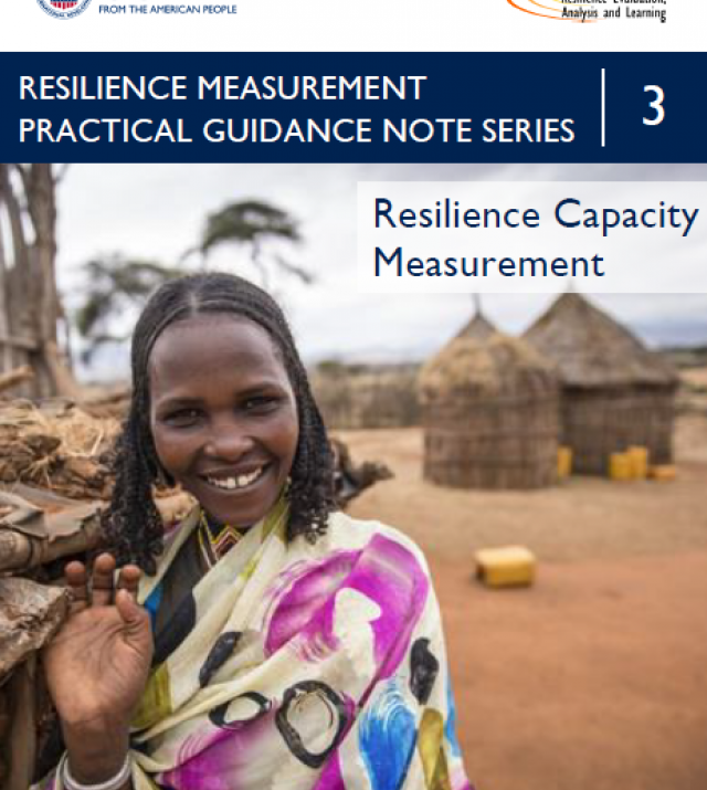 Download Resource: Resilience Measurement Practical Guidance Series: Guidance Note 3 – Resilience Capacity Measurement