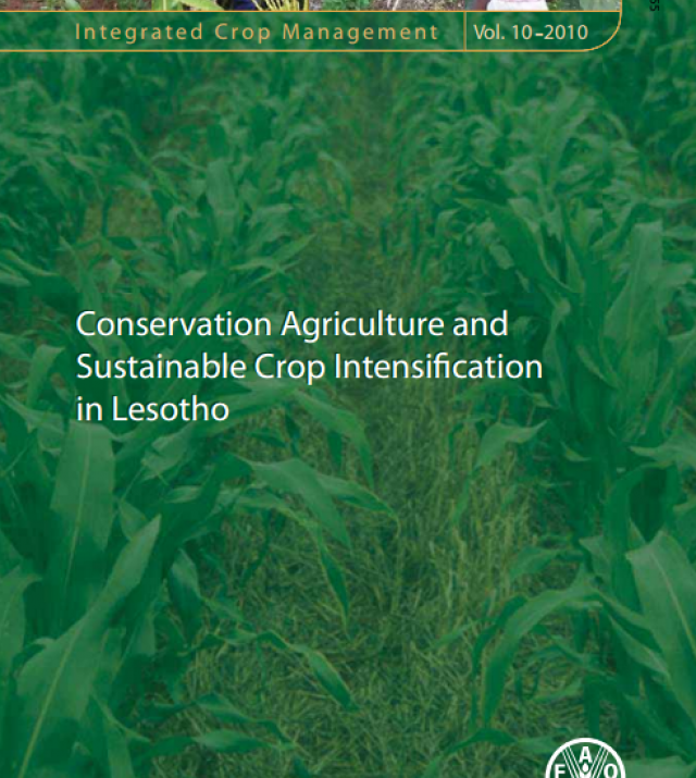 Download Resource: Integrated Crop Management—Conservation Agriculture and Sustainable Crop Intensification in Lesotho