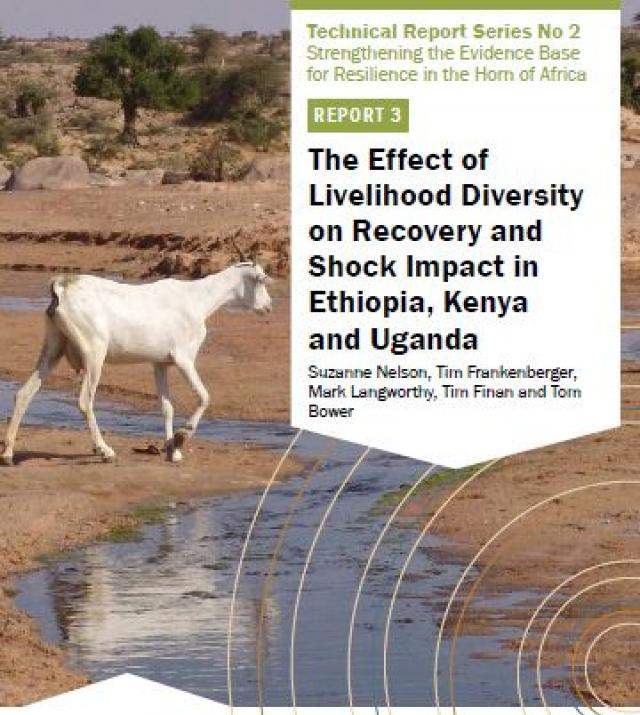 Download Resource: The Effect of Livelihood Diversity on Recovery and Shock Impact in Ethiopia, Kenya and Uganda