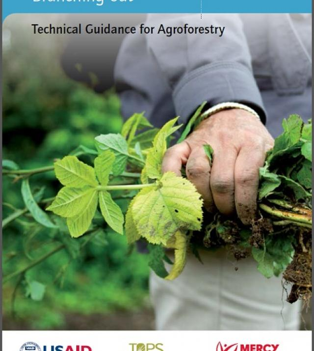 Download Resource: Branching Out: Technical Guidance for Agroforestry
