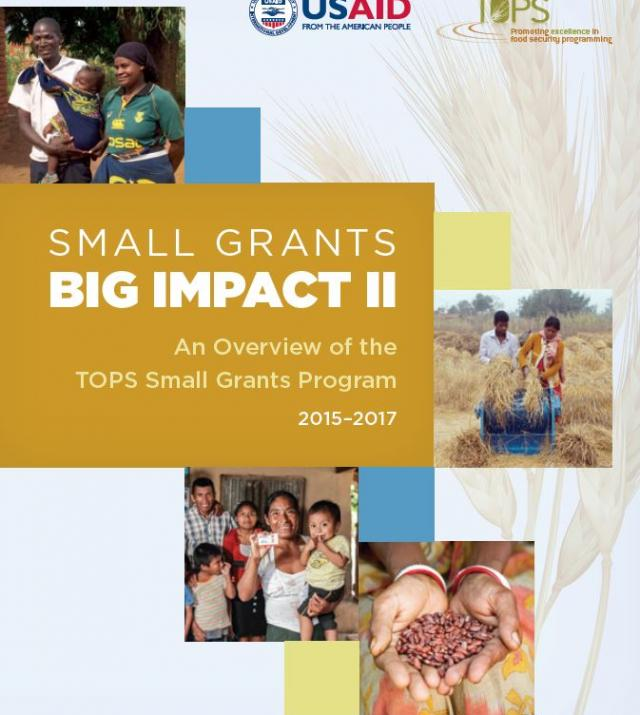 Download Resource: Small Grants Big Impact II: An Overview of the Small Grants Program, 2015-2017